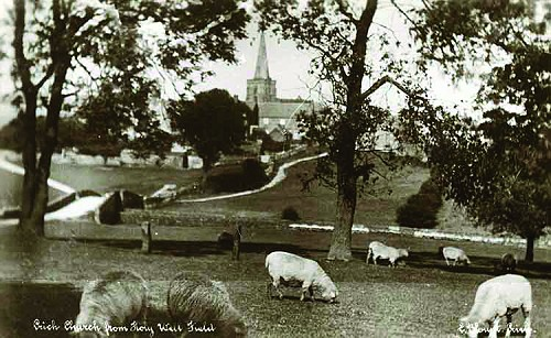 View of St. Mary's Church from sheep fields below