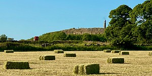 Hay making in Crich